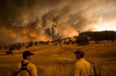 تقرير صادم: واحد من كل خمسة بلدان مهدد بانهيار النظام البيئي - تدهور النظام البيئي الذي يشكل ثروة الكوكب - انهيار الاقتصاد العالمي