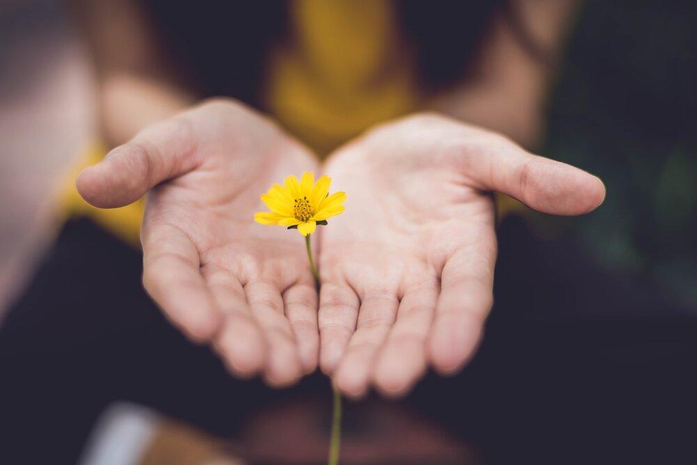 كيف تجد معنى لحياتك بواسطة العلاج النفسي والفلسفة والشعر؟
