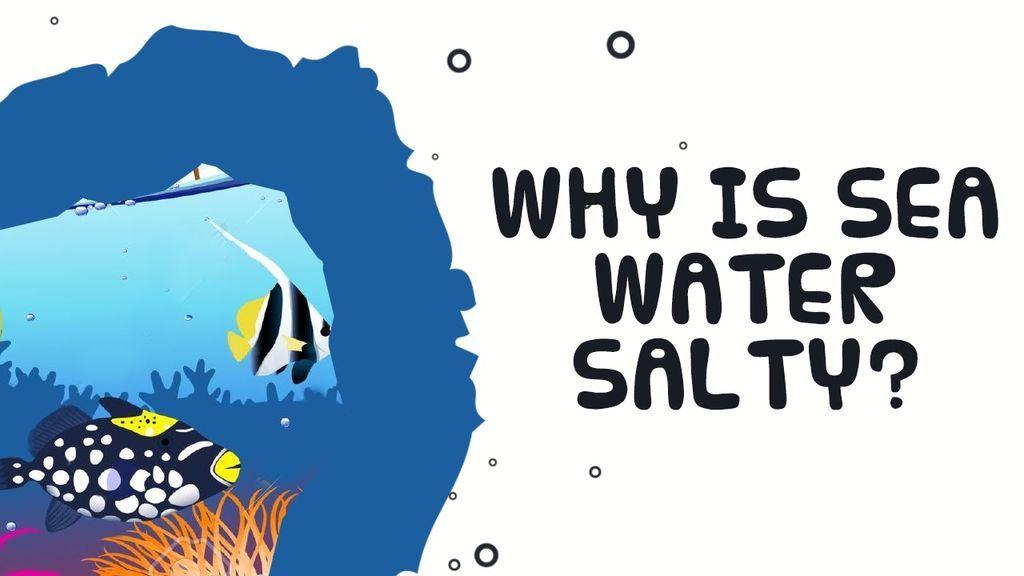 ما سبب ملوحة مياه البحر ؟