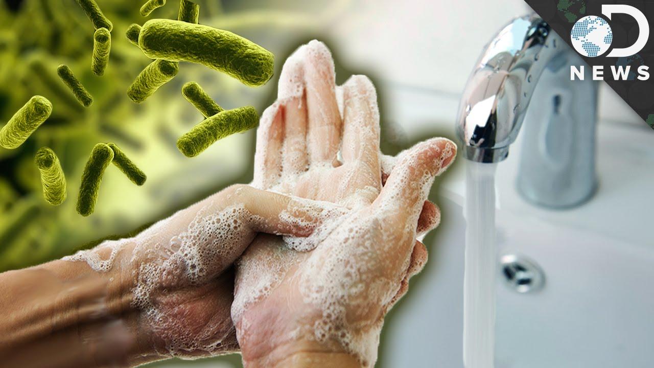 أغلبنا يغسل يديه بطريقة خاطئة، فما الطريقة الصحيحة؟ - ما هي الطريقة الصحيحة التي يجب عليك اتبعها لغسل يديك - الحفاظ على نظافة الأيدي - الصابون