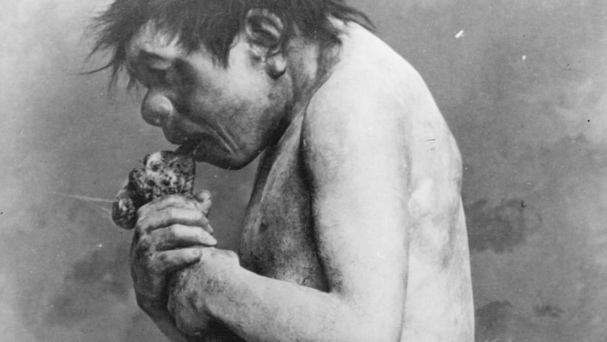 التغير المناخي دفع إنسان النياندرتال إلى أكل لحوم البشر - حياة إنسان النياندرتال الذي عاش في العصر ما قبل الجليدي الأخير - الإنسان القديم