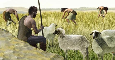 الثورة الزراعية التي حصلت نحو 10 آلاف عام سابقًا في منطقة الهلال الخصيب حيث بدأ الناس بالزراعة لأول مرة - ثورة العصر الحجري الحديث