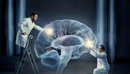 علماء يزرعون ذكريات في دماغ طائر مغرد!