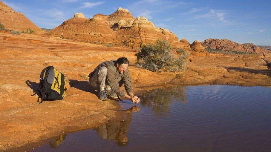 لماذا لم يُعطِنا التطور القدرة على شمّ رائحة المياه العذبة