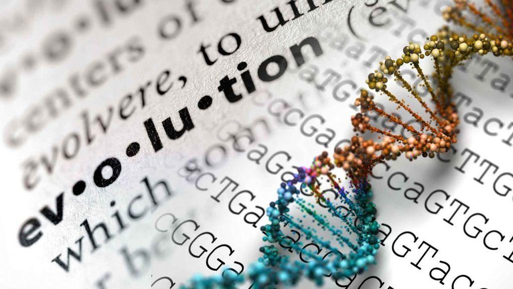 التطور الملحوظ أثناء الحدوث - الجزء الثالث (التطور عن طريق تدخل الإنسان)
