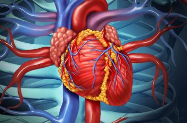 نوع من العمليات الجراحية التي تتم على عضلات أو شرايين أو صمامات القلب - ما هي عملية القلب المفتوح وكبف تنفذ ومتى يحتاجها المرض؟