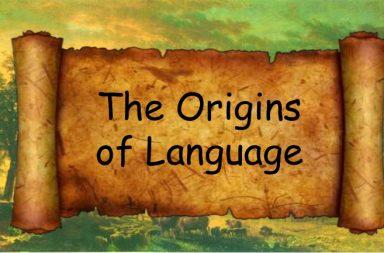 أصول اللغة البشرية تعود إلى 25 مليون سنة - القشرة السمعية - القشرة الجبهية - نشأة اللغة ومراكزها في أدمغتنا - الدراسات التصويرية على أدمغة القردة