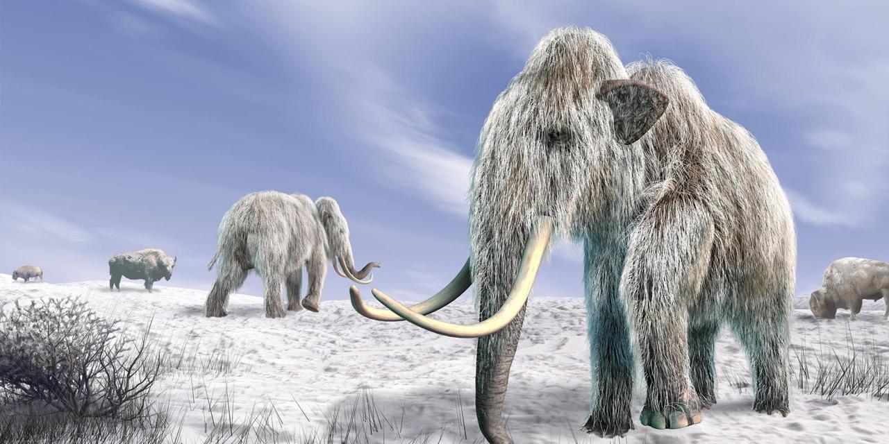 العصر الجليدي: الخليج العربي واحة في كوكب متجمد