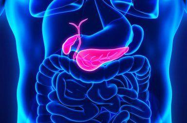 ما يجب أن تعرفه عن سرطان البنكرياس pancreatic cancer انتشار الخلايا السرطانية في البنكرياس العلاج الكيميائي لمرضى السرطان