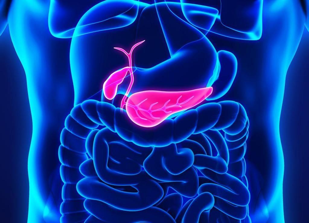 ما يجب أن تعرفه عن سرطان البنكرياس