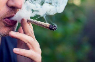 دراسة جديدة تحقق فيما وراء الترابط بين الماريجوانا وانفصام الشخصية هل يسبب تدخين الحشيش الذهان العلاقة بين الأمراض النفسية والماريوانا