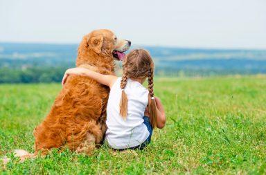 النشأة بالقرب من الكلاب في الطفولة قد تقلل من احتمالية الإصابة بالفصام عند النضج - قدم الحيوان الصادق المطيع الحامي لمالكه الرفقة - الحيوانات الأليفة