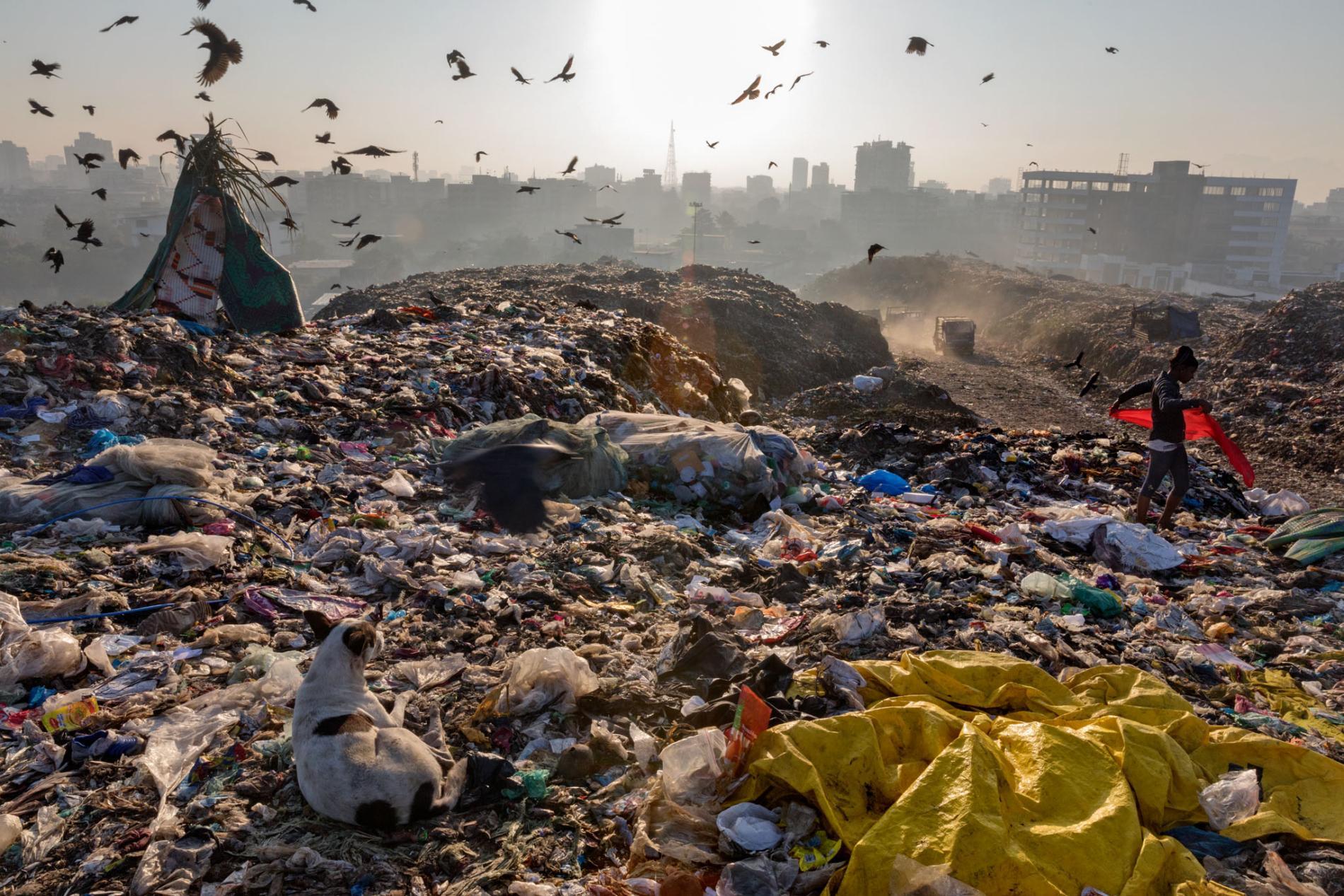 لماذا نعتمد كثيرًا على البلاستيك - المواد البديلة وتقنيات إدارة النفايات المتقدمة لحماية بيئتنا - المشكلة الأكثر خطورة هي مدى صعوبة تحليل المواد البلاستيكية