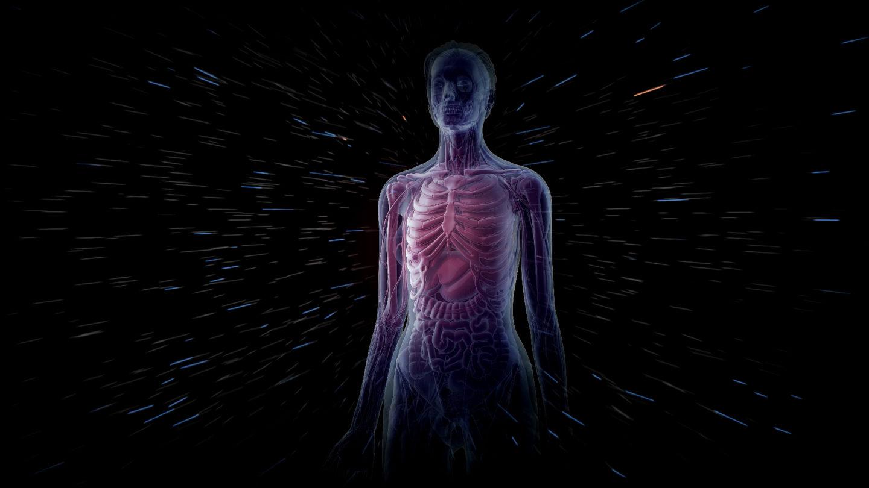 كم يصدر الجسم البشري من إشعاعات؟