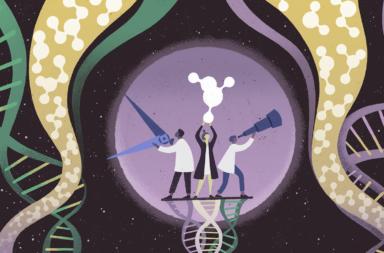 من أين تأتي الجينات المستحدثة ؟ وما وظيفتها؟ ما علاقتها بالانتخاب الطبيعي؟ ما هي وظيفة الجين؟ ما آلية نشوء الجينات الجديدة وهل هي ضارة أم نافعة