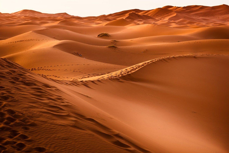 الصحراء الكبرى: أكبر صحراء حارة على وجه الأرض، الجغرافيا، المناخ، والتنوع الحيوي فيها