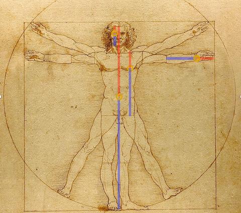 تم العثور على النسبة الذهبية ضمن جمجمة الإنسان، فماذا يعني ذلك؟