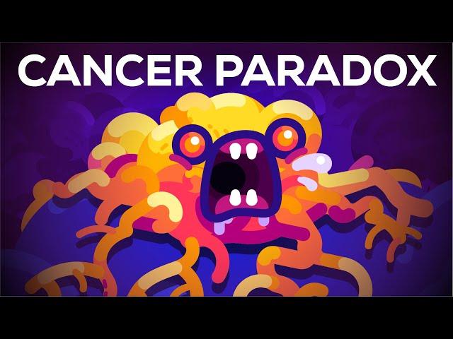 لماذا لا تصاب بعض الحيوانات بالسرطان؟ حل مفارقة بيتو لفهم أفضل للسرطان