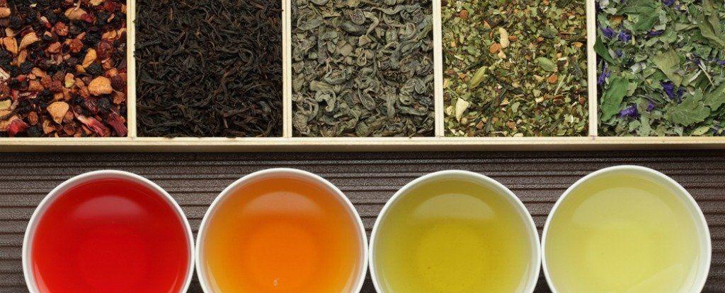 شاي التنحيف: هل يساعد حقًا على خسارة الوزن أم أنه خدعة؟