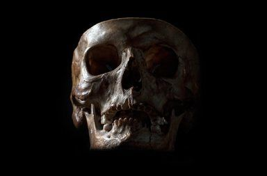 وجود جينات لسلالات بشرية منقرضة في الحمض النووي للإنسان المعاصر وجود الحمض النووي من البشر القدماء في الحمض النووي للإنسان المعاصر