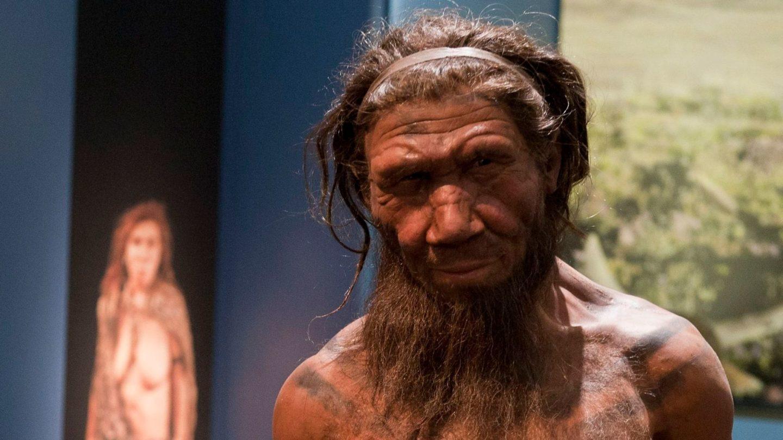 أين عاش إنسان نياندرتال؟ وكيف كان شكله؟