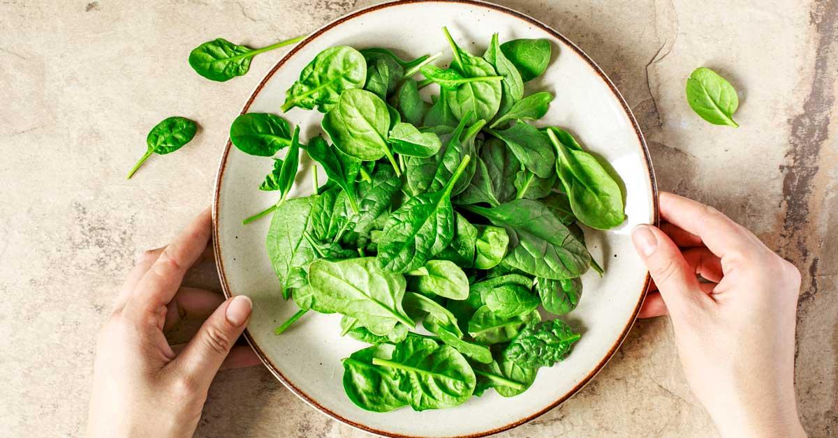 السبانخ: حقائق وفوائد - الخضراوات ذات الأوراق الخضراء - فصيلة القطيفيات مثل الشمندر والكينوا - الفوائد الصحية للسبانخ - مضادات الأكسدة