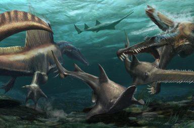اكتشاف حفرية لأول ديناصور قادر على السباحة في المغرب - الديناصورات تستخدم ذيلها للسباحة والبحث عن فرائسها - العصر الطباشيري - الديناصورات غير الطائرة