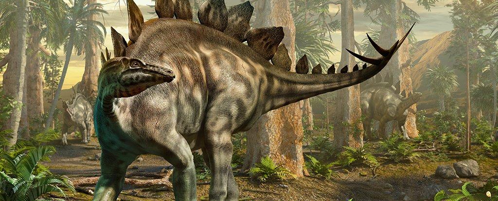 اكتشاف أول أثر للستيغوصور في اسكتلندا