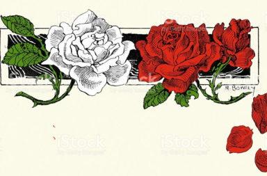 لمحة تاريخية عن حروب الوردتين - سلسلة الحروب الأهلية العنيفة التي سبقت سيطرة أسرة تيودور - الصراع على العرش الإنكليزي بين عائلة لانكستر وعائلة يورك