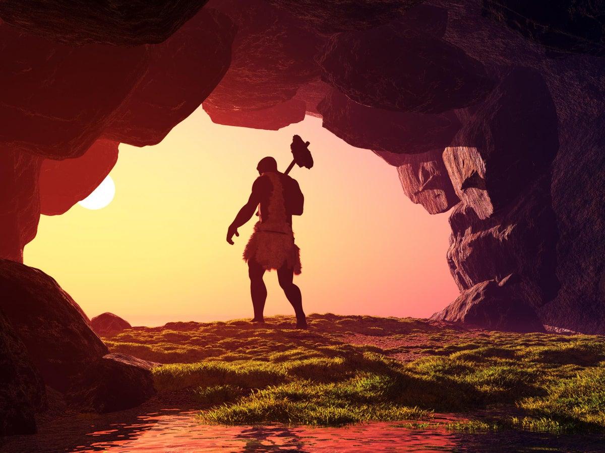 العصر الحجري: تاريخ موجز