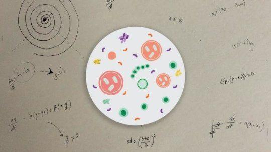 هل يمكن أن تساعد الرياضيات في تفسير أجسامنا وأمراضنا؟