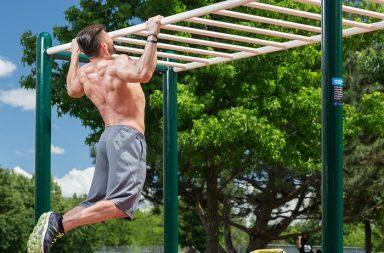 يمكننا الآن تنشيط الخلايا التي تحمي العضلات من الهزال بعد عمر الثلاثين - ظاهرة تقلص العضلات - تقلص عضلات الجسم مع التقدم بالعمر - الخلايا الساتلة