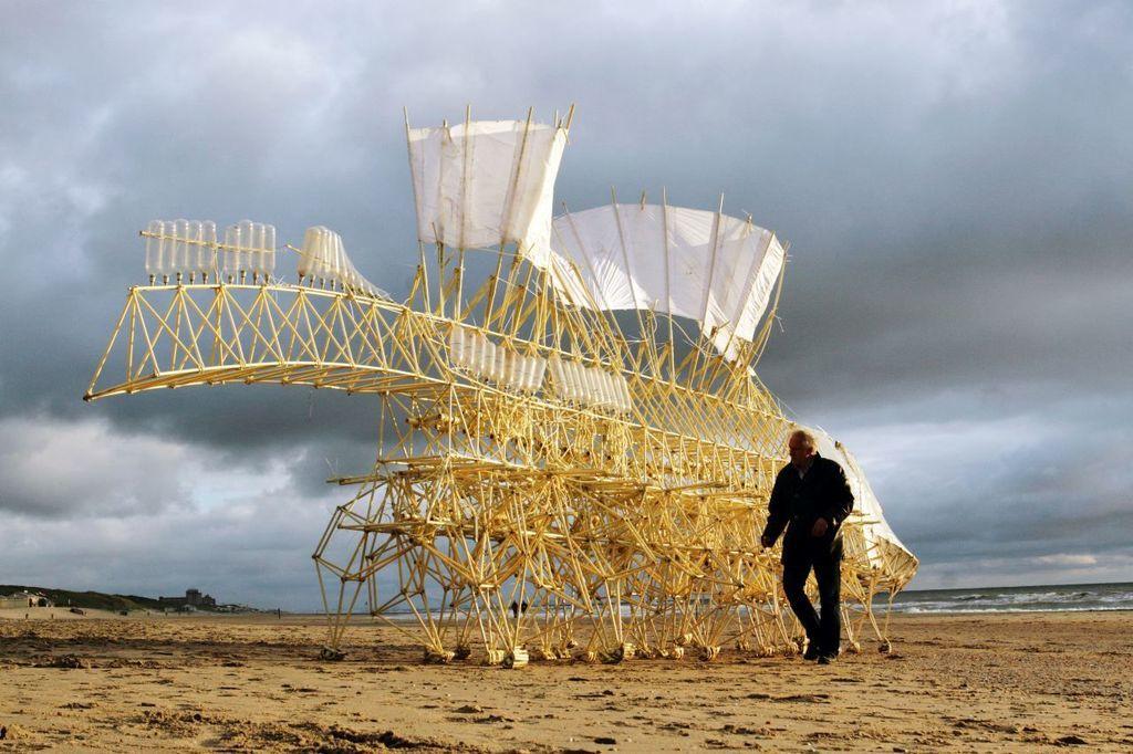 وحوش الشاطئ، كائنات حية، ام معجزة هندسية؟