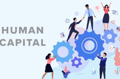 ما العلاقة بين رأس المال البشري والنمو الاقتصادي؟ ما الذي يقود النمو الاقتصادي؟ الاستثمارات في رأس المال البشري ونمو التوظيف وعلاقة النمو الاقتصادي