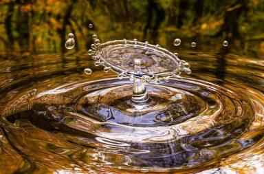 يبدو أن للماء بنيتين مختلفتين في حالته السائلة - أثبت علماء أن للماء تركيبين جزيئيين مختلفين في حالته السائلة - الأنظمة الحيوية المعتمدة على الماء السائل
