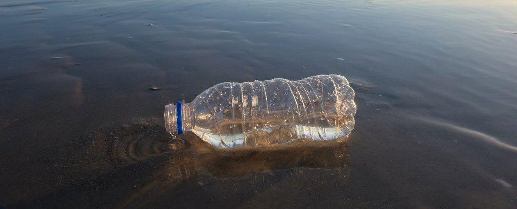 تهجين إنزيم متحول ليصبح أفضل ست مرات في التهام البلاستيك - طورت بعض الميكروبات طريقة تساعد النباتات على التهام البلاستيك - الحد من التلوث