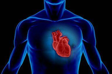 التهاب العضلة القلبية myocarditis الأسباب والأعراض والتشخيص والعلاج الانقباض والانبساط لضخ الدم من القلب وإليه فشل عضلة القلب