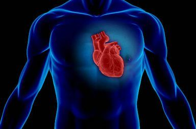 أعراض الذبحة الصدرية أسباب الإصابة بالذبحة الصدرية ألم في الصدر آلام القلب الأسباب علاج الذبحة الصدرية القلب الدم الأوعية الدموية الشرايين