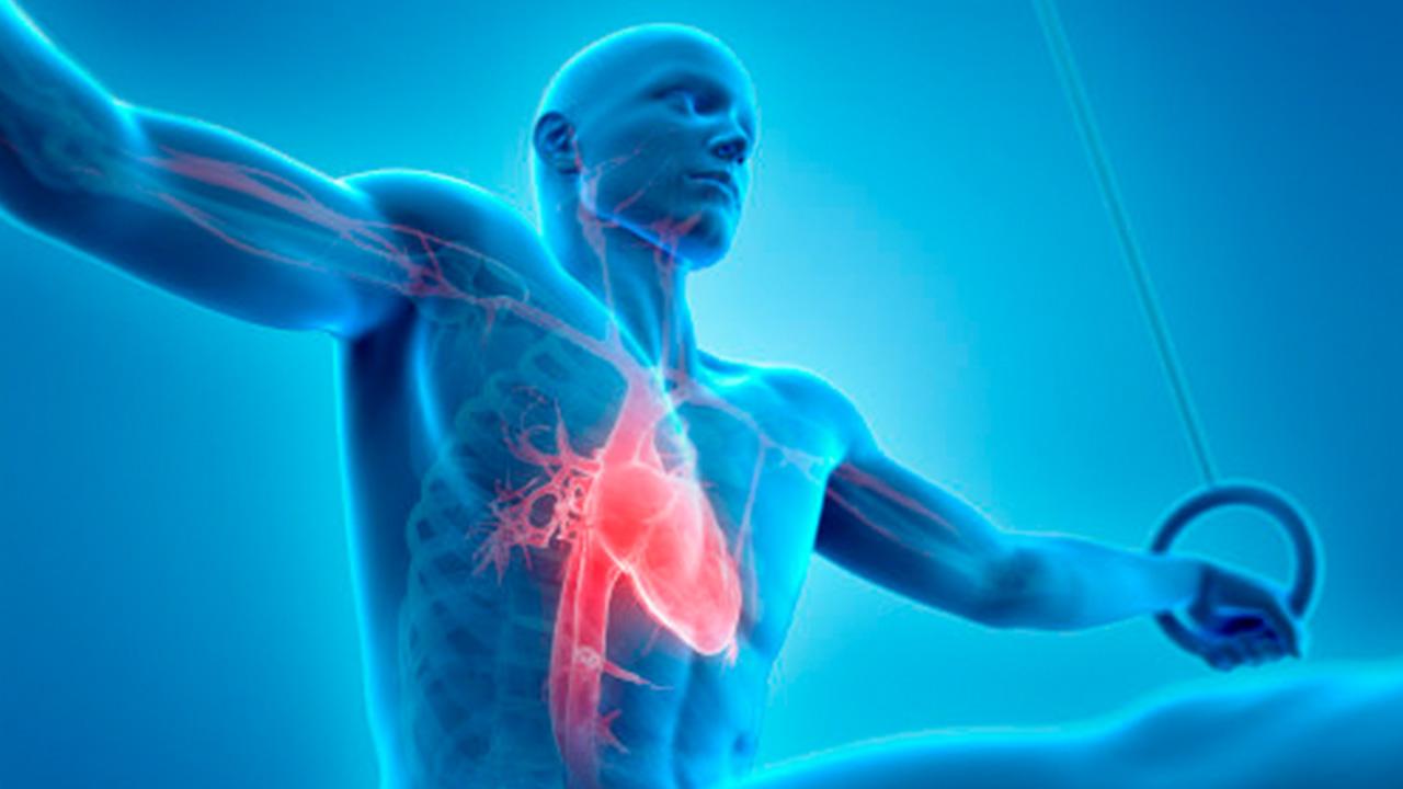 ما أسباب ألم الصدر في أثناء التنفس - علامات النوبة القلبية - ألم أو ضيق في الصدر - ضيق التنفس - الذبحة الصدرية - التهاب الشعب الهوائية