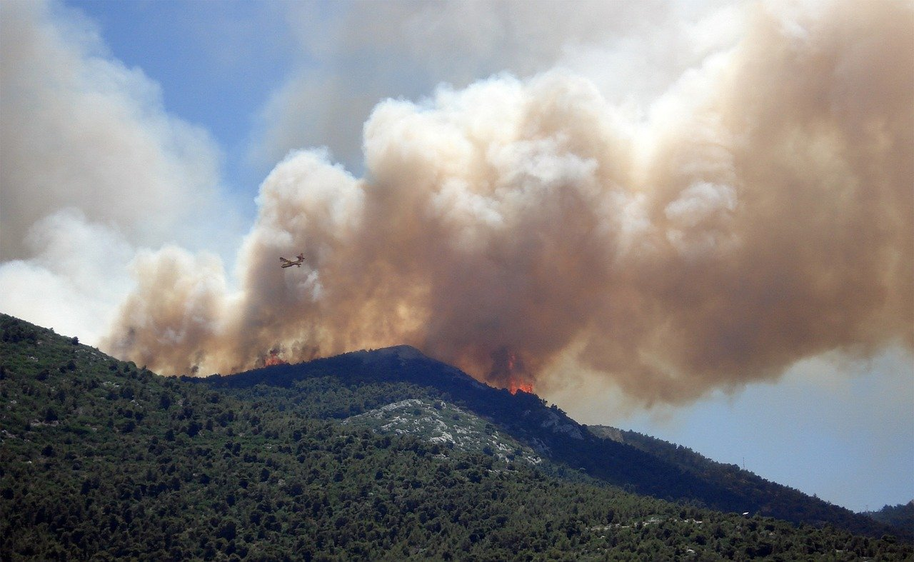 عشر نصائح عليك معرفتها للتعامل مع دخان حرائق الغابات - الغازات كالمركبات العضوية المتطايرة وأكاسيد النيتروجين وأول أكسيد الكربون