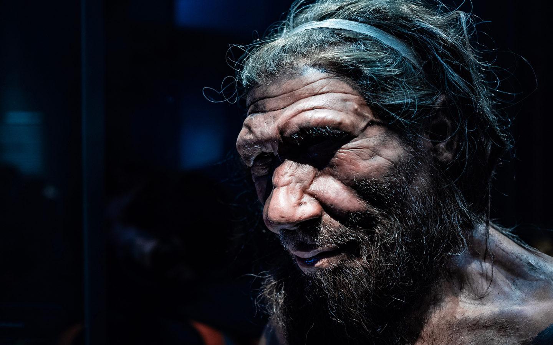 التغير المناخي دفع إنسان النياندرتال إلى أكل لحوم البشر